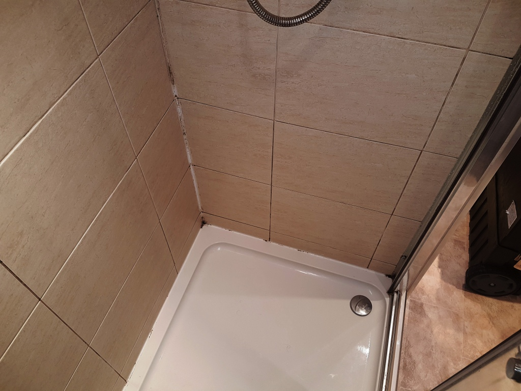Ceramic Shower Cubicle Before Cleaning Edinburgh